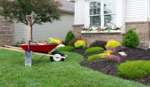 Forever Green Lawn & Landscape Inc