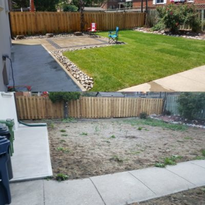 Garden Landscaping Before/After