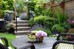 landscape design and construction