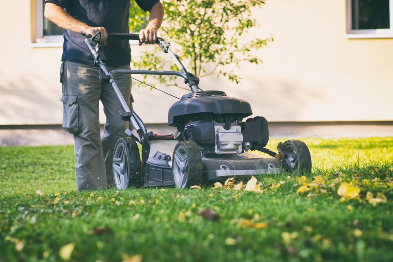 Mowing the grass with a lawn mower
