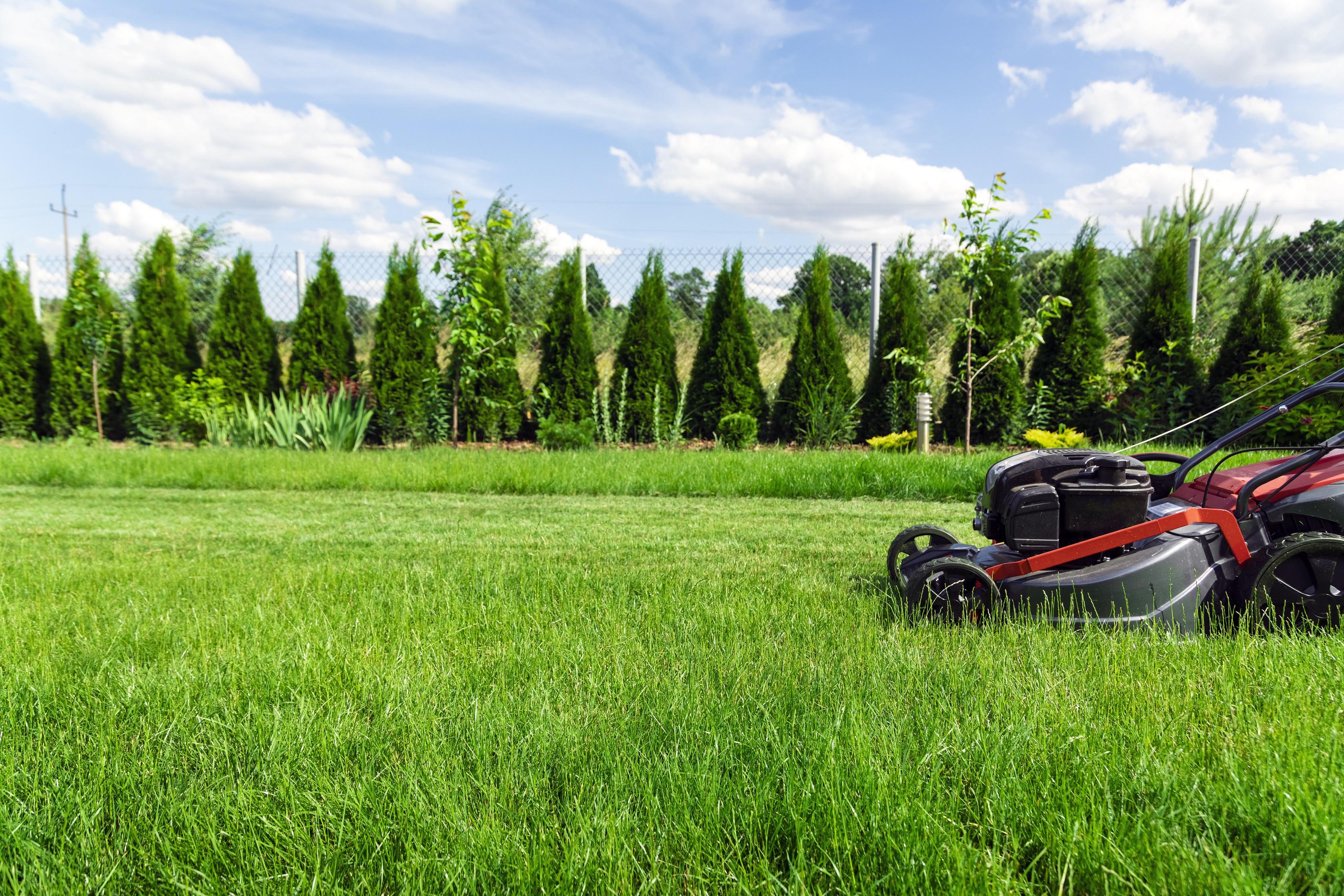 residential garden installation,