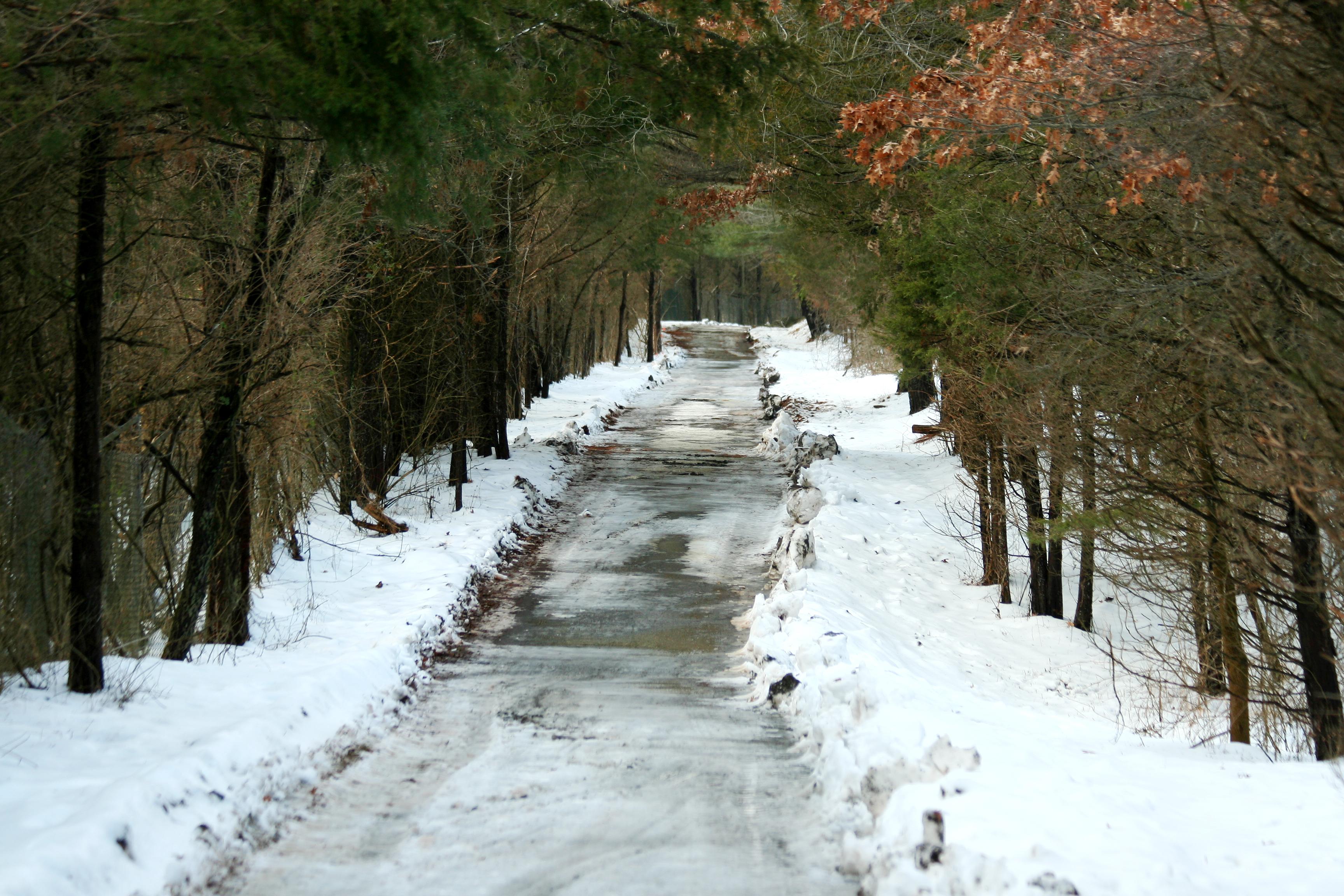 Eco-Friendly Snow Removal