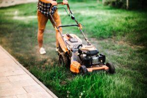 Hiring Professional Landscapers