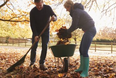 Consult This Lawncare Checklist before Fall Arrives